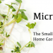 Microgreens: The Small But Mighty Home Gardening Revolution